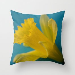 Yellow and Blue Throw Pillow
