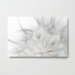 Lightly Metal Print