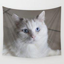 Ragdoll Cat Blue Eyes Wall Tapestry