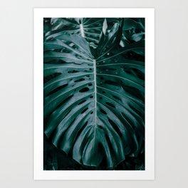 monstera ultramarine Art Print