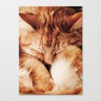 garfield Canvas Prints featuring Garfield Sleeps by Rachel's Pet Portraits