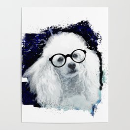 Poodle dog with glasses Poster