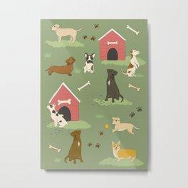 Dog Days Metal Print