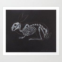 Rabbit Skeleton Art Print