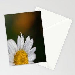 Raindrops and Daisy Stationery Cards