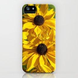 Rudbeckia Gloriosa iPhone Case