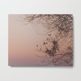 Sunset in Pink Metal Print