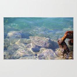 Hawaiian Harbor Waters Rug