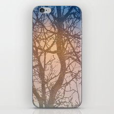 Tree Branches iPhone Skin