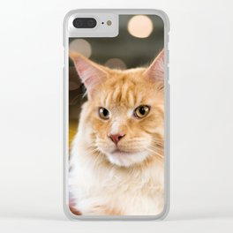 Red-white tabby Maine Coon cat, close-up portrait Clear iPhone Case