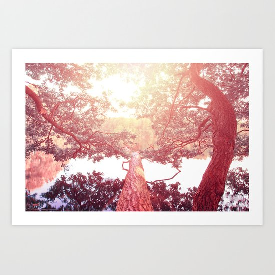 Red woods #trees Art Print