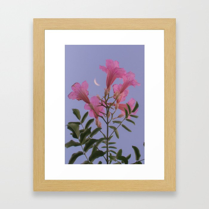 fall asleep dreaming bout all the places I could go. Framed Art Print