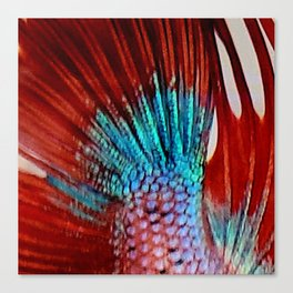 Mermaids Tail 2 Canvas Print