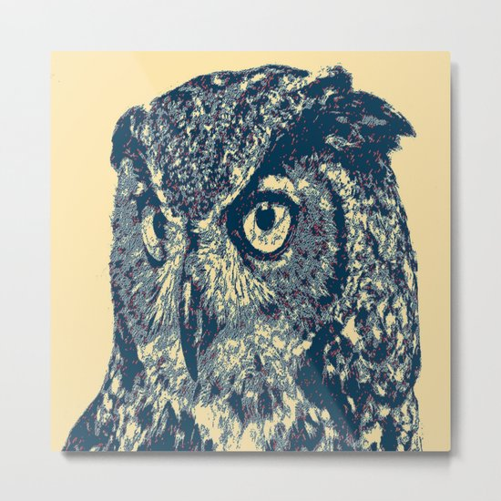 Owl City  Metal Print