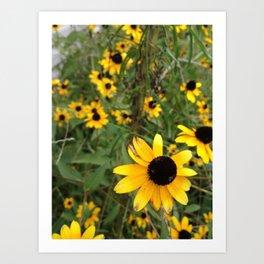 Flower Weather. Art Print