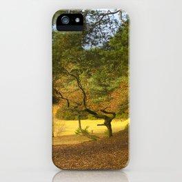 Oxshott Heath England iPhone Case