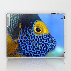 Blue-faced Angelfish Laptop & iPad Skin
