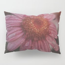 Refreshed Perspective Pillow Sham