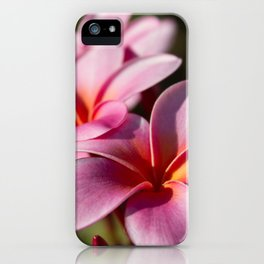 Kaupo Summer Treasure iPhone Case