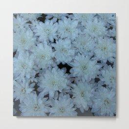 White flowers Metal Print