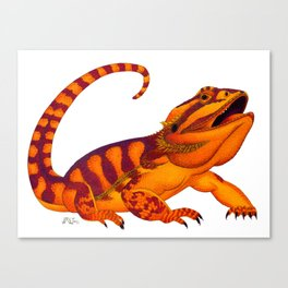Oaxacan Bearded Dragon Canvas Print