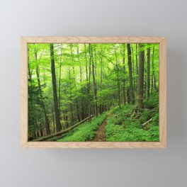 Forest 6 Framed Mini Art Print