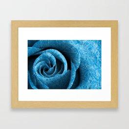 Arctic Rose Framed Art Print