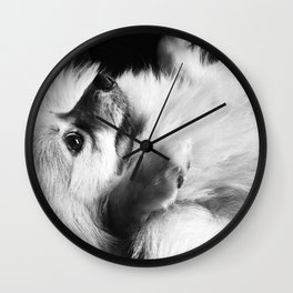 Just Love Pomeranians Wall Clock