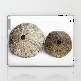 Sea Urchin Shells Laptop & iPad Skin