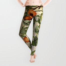 Vintage Fruit Pattern Leggings