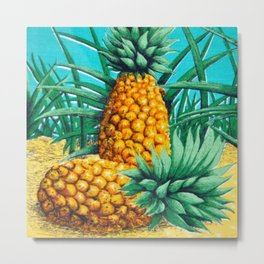 Vintage Queensland Pineapple Metal Print
