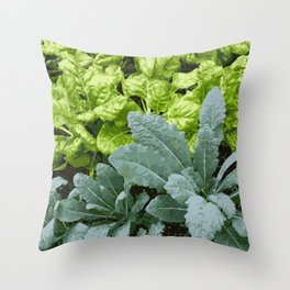 Healthy Lettuce Leaves Vector Illustration Throw Pillow