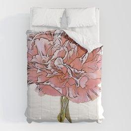 Carnation Dianthus caryophyllus clove pink cultivation plant noble Comforters