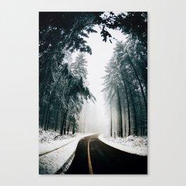 Winding Winter Roads Canvas Print