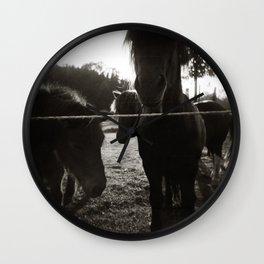 { pony pals } Wall Clock