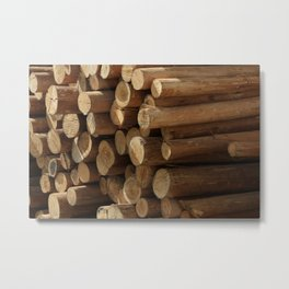 Logs in Cotacachi Metal Print