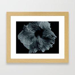 Hibiscus in Indigo Framed Art Print