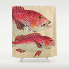 Fish Classic Designs 7 Shower Curtain