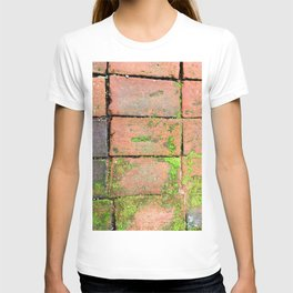 Bricks Walkway T-shirt