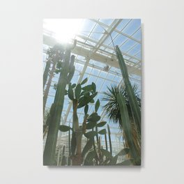 Cactus Glasshouse, down in the greenhouse with the cacti Metal Print