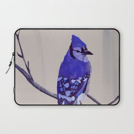 Blue Jay Bird Laptop Sleeve