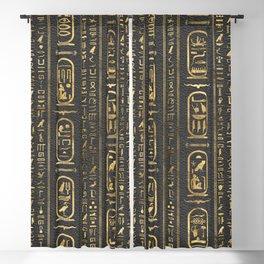 Egyptian hieroglyphs Gold on Leather Blackout Curtain