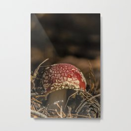 Red forest #2 Metal Print