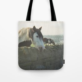 Horse in Whitby Tote Bag