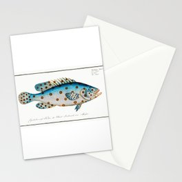 Spotted Scat (Argus) Fish Chart Identification Illustration portrait by Marcus Elieser Bloch Stationery Cards
