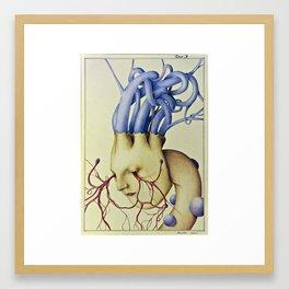 Wunderkammer Tav.3 Framed Art Print