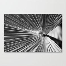Radial Canvas Print