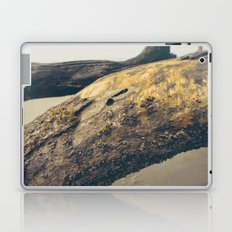 Gold Driftwood on the Beach Photography Laptop & iPad Skin