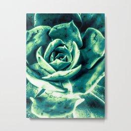 closeup green succulent plant texture abstract background Metal Print