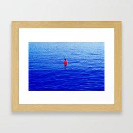Bouy Blue Bird Framed Art Print